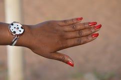 Маникюр ногтей Стоковые Фото