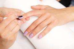 Маникюр - ногти красивой деланной маникюр женщины с фиолетовым ногтем po стоковые фотографии rf