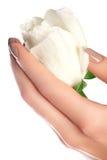 Маникюр, руки & курорт Красивые руки женщины, мягкая кожа, beautif Стоковые Фото