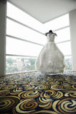 Мантия свадьбы Стоковые Изображения