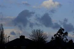 Манчестер Англия Верхняя часть дома и дерева в холодном вечере Стоковое Фото