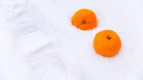 Мандарины в снеге Стоковая Фотография RF