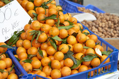 мандарин стоковые фотографии rf