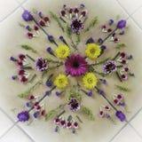 Мандала цветка Стоковое фото RF