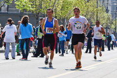 марафон 2011 24th belgrade Стоковое фото RF