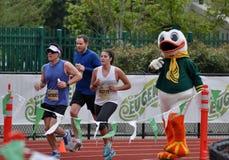 марафон eugene Стоковое Изображение