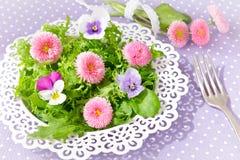 Маргаритка pansy салата цветет вилка стоковое фото