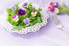Маргаритка pansy салата цветет вилка стоковое изображение