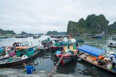 Марина зачаливания, залив Ha длинный, провинция Quang Ninh, Вьетнам Стоковое Изображение