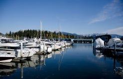 Марина на гавани на солнечном утре - 2 угля Стоковое Изображение