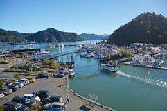 Марина & туристы Picton на утре осени Стоковое Изображение RF