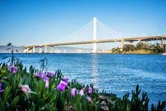 Марина шлюпки около нового моста залива oakland водя к халифу oakland Стоковое Фото