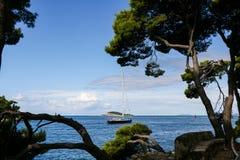 Марина яхты Cavtat - Хорватия Стоковое фото RF