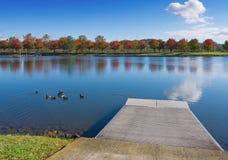 Марина Oak Ridge Стоковое Изображение RF