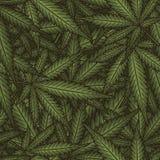 Марихуана выходит безшовная картина вектора Предпосылка зеленого цвета завода конопли Стоковые Фото