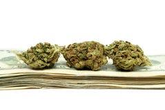 Марихуана, деньги от продажи наркотиков Стоковое фото RF