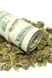 Марихуана и деньги Стоковая Фотография RF