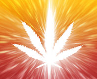марихуана листьев иллюстрации Стоковые Фото