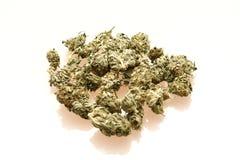 марихуана медицинская Стоковые Изображения