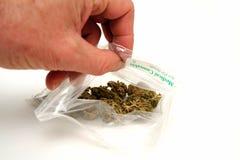 марихуана медицинская Стоковые Фото