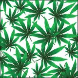 марихуана предпосылки стоковая фотография