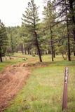 Маркированная тропка Стоковая Фотография RF