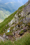 маркированный путь горы Стоковое Изображение RF