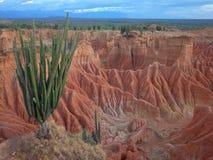 Марсианский ландшафт Cuzco, красная пустыня, часть пустыни ` s Tatacoa Колумбии стоковые фотографии rf