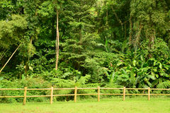 Мартиника, живописный город румян Morne в Вест-Индиях стоковое изображение