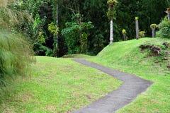 Мартиника, живописный город румян Morne в Вест-Индиях стоковое фото rf