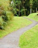 Мартиника, живописный город румян Morne в Вест-Индиях стоковое изображение rf