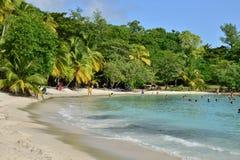Мартиника, живописный город Riviere Pilote в Вест-Индиях Стоковые Фотографии RF