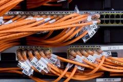 маршрутизатор сети соединений Стоковые Изображения RF
