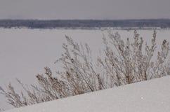 марш Снег сверкнает Банк Волга Стоковое Изображение