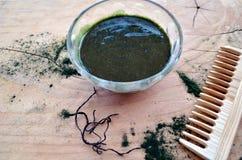 Маска естественных волос травяная с spirulina Стоковое Изображение RF