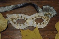 маска масленицы серая изолированная Стоковые Изображения