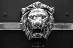 Маска льва Стоковая Фотография