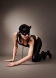маска s девушки кота Стоковое Изображение