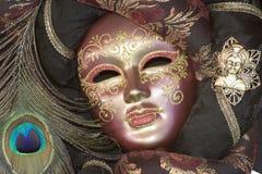 маска venice Стоковое Изображение