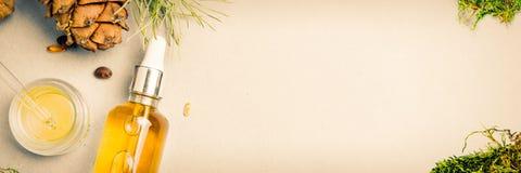 Масла естественного кедрового масла гомеопатические, пищевые добавки для кишечного здоровья, заботы кожи стоковая фотография