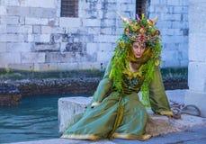 Масленица 2019 Венеции стоковое изображение