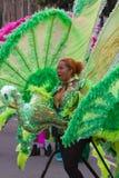 масленица leicester Великобритания 2010 caribbean Стоковое Изображение RF