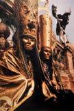 Масленица Masc, который держат в Венеции на фестивале в феврале стоковое фото