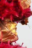 масленица venice Стоковая Фотография