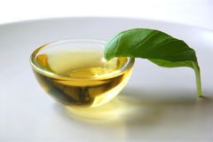 масло базилика Стоковое фото RF