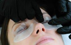 масло состава красотки ванны мылит обработку Процедура по Beautician прокатывать ресницы Отладка ресниц Стоковое Фото