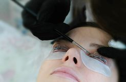 масло состава красотки ванны мылит обработку Beautician положил решение на curler ресницы curler с щеткой слоение плетки Стоковое фото RF