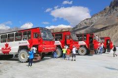 Массивнейшие исследователи льда, специально конструированные для ледникового перемещения, принимают туристов на поверхность ледни Стоковое Изображение