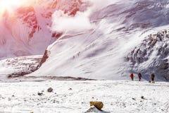 Массивнейший ледник на горах большой возвышенности строгих и малом теле высокогорный идти альпиниста Стоковое Изображение RF