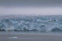 массивнейший ледник Монако стоковая фотография